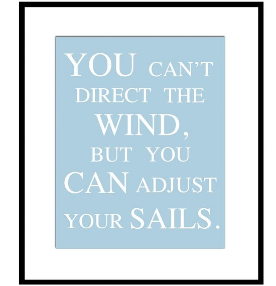 You Can't Direct The Wind