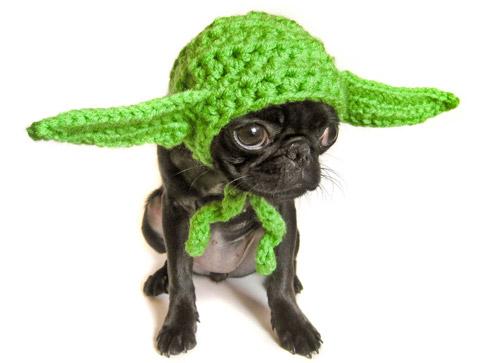 Yoda Halloween Costume