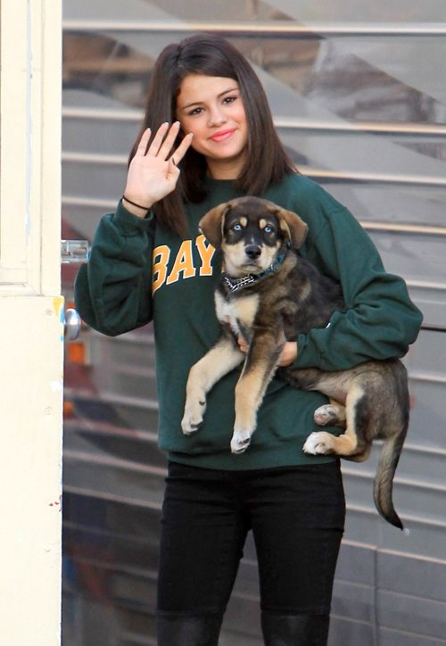 Selena Gomez Adopts Baylor the Puppy
