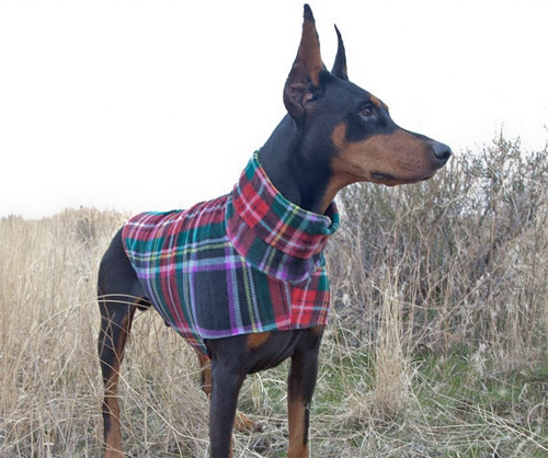 Dog Sweater Custom Fit Multi-Plaid by Hoverfly