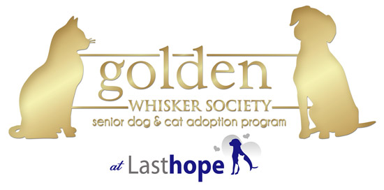Golden Whisker Society at Last Hope